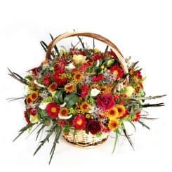סידור פרחים בסלסילה